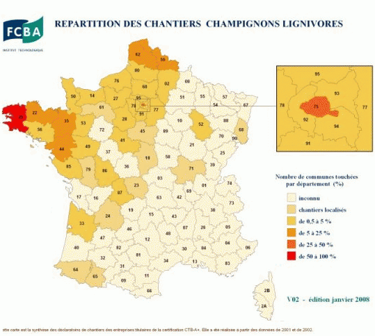 https://www.devenir-rentier.fr/uploads/4615_merule-france.png